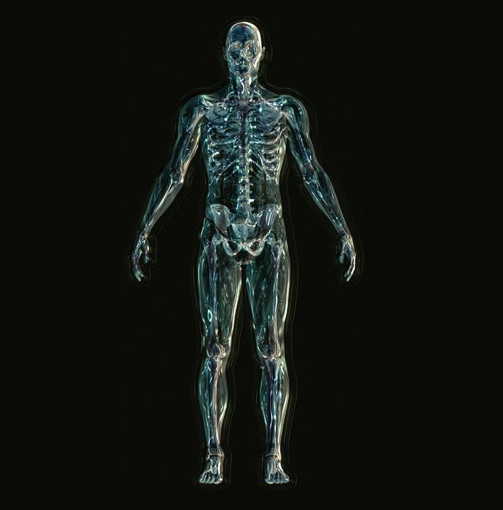 Skeleton 1243818 960 720